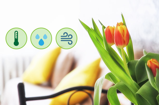 Le temperature di riferimento per ottimizzare i consumi e creare un sano comfort climatico all'interno di casa e ufficio, tutto l'anno